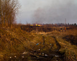 Крюково, поселок Каменка, сжигают мусор